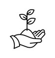 sprout in a hand thin line icon human hand vector image