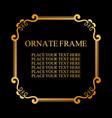vintage decorative frame elegant ornamental vector image vector image