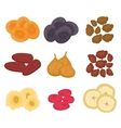 Dried fruits set flat style Raisins apricots vector image vector image