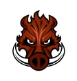 Fierce angry wild boar head vector image vector image