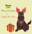 funny cartoon sotch terrier christmas background vector image vector image