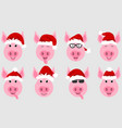 funny pigs in santa hats chinese symbol new year vector image vector image