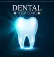 shining helthy tooth with lights fresh vector image vector image