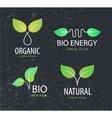 set of eco logos leaves organic vector image
