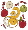 apples set vector image
