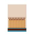 matchbox with matches sulphur head match set vector image