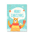 merry christmas bear on poster vector image