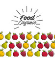 natural food icon stock vector image vector image