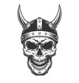skull in the viking helmet vector image vector image
