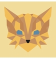Brown and yellow low poly cat vector image