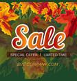 modern design of web banner for sale vector image vector image