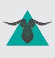 polygonal head mountain sheep vector image vector image