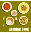 Regional arab cuisines dishes flat icon vector image vector image