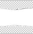 torn strip from the middle of a transparent sheet vector image vector image