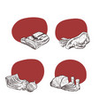 place for text with hand drawn meat vector image