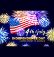 celebrating the 4th of july independence day vector image vector image
