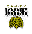 craft beer hand drawn design with hops vector image