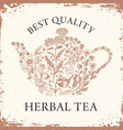 label or banner for herbal tea with teapot and vector image