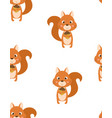 seamless pattern with squirrel vector image vector image