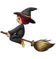 Witch and broom vector image vector image