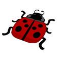 flat ladybug on white background vector image vector image