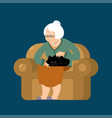 grandmother and cat sitting on chair granny cat vector image vector image