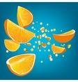 orange explosion vector image vector image