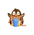 penguin in scarf with mittens and christmas gift vector image vector image