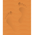 Trace on sand vector image