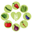 vegetables healthy food ingredient vector image vector image