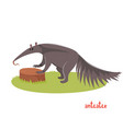 cute anteater in cartoon style vector image