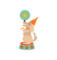 cute dog standing on stage with ball funny animal vector image