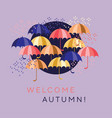 flat colorful umbrellas and drops vector image