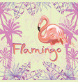 pink flamingo isolated on green background vector image