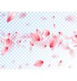 pink sakura petals falling graphics vector image