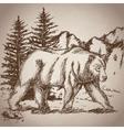 hand drawing bear walk vintage landscape vector image