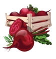Beet harvest in wooden boxes vector image vector image