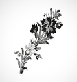 Branch with flowers on the diagonal vintage isolat vector image vector image