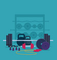 fitness and bodybuilding equipmen vector image