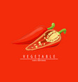 hot chilli pepper vector image vector image