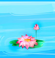 lotus pink flower vector image vector image