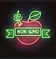 neon apple iconnon gmo decoration and vector image