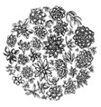 round floral design with black and white succulent vector image vector image