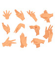 set human hands gestures different human vector image