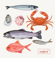 set of seafood hand drawn vector image vector image