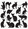 sphynx cat silhouettes vector image