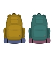 Travel backpacks Mustard and aqua blue colors vector image