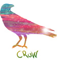 Abstract crow vector image vector image