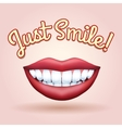 Just Smile vector image