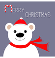 White polar bear in Santa Claus hat and scarf vector image